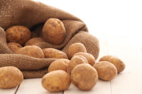 pommes de terre jaune